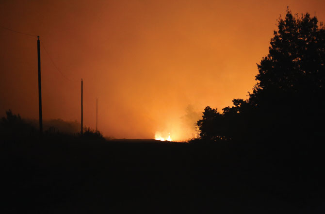 Wildfire-blog-image
